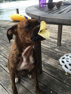 Iz doin' a duck lips for ya!