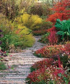 Plan for an Awesome Autumn - With the right plants, your garden can have a grand finale