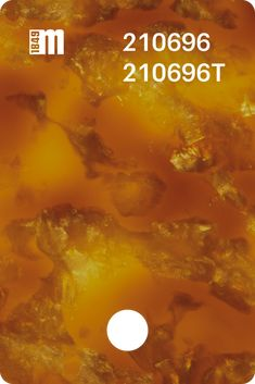 210696 – Mazzucchelli 1849