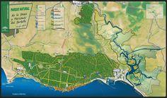 Mapa-guía del Parque Natural Breña y Marismas del Barbate. Cádiz. Spain