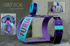 www.crazydog.pl Best for dogs!