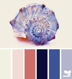 shelled blues