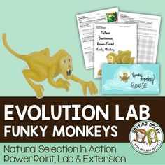 "Your students will love this real-life interactive lab where they see evolution in action as populations fluctuate based on the environmental conditions imposed upon them. Students are assigned to one of four funky monkey species and must suffer the ""Wrath of Nature"" as the large die is rolled and environmental changes occur. They will beg you to play it again and again!"