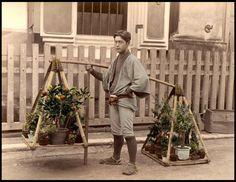 57. 観葉植物の行商人(イケメン) この植木鉢を落とさずに運ぶバランス感覚は凄い。