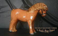 A pumpkin chestnut Shetland Pony, so cute! A Pumpkin, Glazed Ceramic, Pony, Pottery, Australia, Christmas Ornaments, Holiday Decor, Pony Horse, Ceramica