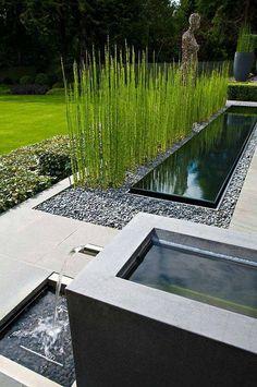 Diseño espejo de agua y jardin                                                                                                                                                                                 Más