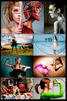 Fibonnaci Photography