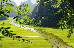 Explore Halong Bay on land combined with the Ancient Capital    #halongbay #halongbayonland #ninhbinh #Ancientcapital