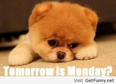 Tommorow is monday, Monday nobody's looking forward to monday....