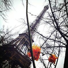 Un piccolo tocco di colore in questa giornata grigia.  Une petite touche de couleur dans cette journée grise.  #Paris #Parigi #toureiffel #eiffeltower #fleurs #flowers #torreeiffel #viaggi  #travelphotography #travelpics #travel #voyage #parigigrossomodo