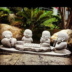 :) little buddhas