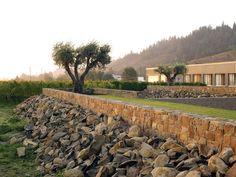 Walden Studios in Geyserville, CA (USA). By Andrea Cochran Landscape Architecture.