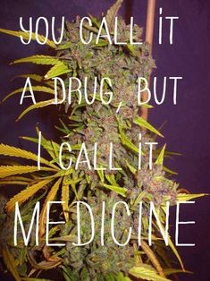 Cannabis is a plant, not a drug!