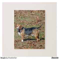 Shop Beagle Jigsaw Puzzle created by FrankieCat. Beagle Dog Puppy, Make Your Own Puzzle, Custom Gift Boxes, Animal Skulls, High Quality Images, Autumn Leaves, Pink And Green, Dogs And Puppies, Jigsaw Puzzles