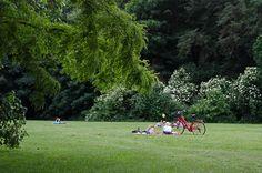 Foto Freitag: Picknicker im Treptower Park   Synke Unterwegs