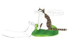 고양이는 대학에 가지 않아 다행 http://www.sisainlive.com/news/articleView.html?idxno=8121