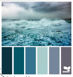 sea colors by Design Seeds.