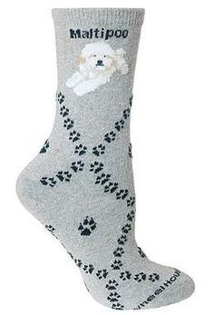 Maltipoo On Grey Argyle Socks Style #2