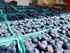 Fresh blueberries that were hand picked this morning are available at the Copley Market today! Toss some berries with our roasted almonds and feta cheese for a refreshing lunch!