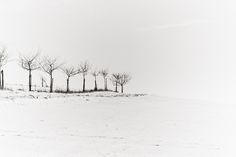 Waiting for the day I can photography strak winter landscapes like this   Winter Landscapes   #photography
