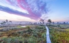 Hiking Routes, Stay Overnight, Campsite, Monet, Conservation, Finland, Trail, National Parks, Relax