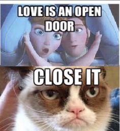 Collect the beautiful grumpy cat memes clean funny - hilarious pets Grumpy Cat Quotes, Grumpy Cat Memes Clean, Grumpy Cat Humor, Grumpy Cat Disney, Grump Cat, Grumpy Kitty, Funny Animal Jokes, Funny Cat Memes, Funny Relatable Memes