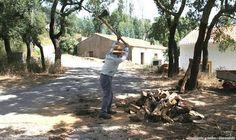 Ver este senhor cortando madeira… | 30 imagens que só quem passava as férias no campo vai lembrar