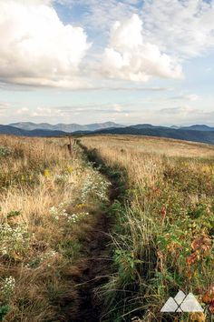 Max Patch: hike the Appalachian Trail to a grassy mountain summit filled with wildflowers in Western NC food gear meals tips Appalachian trail gear gear tips backpacking camping Hiking Usa, Thru Hiking, Colorado Hiking, Camping And Hiking, Hiking Trails, Outdoor Camping, Camping Places, Backpacking Tips, Camping Gear