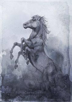 Sleipnir by Woari on DeviantArt