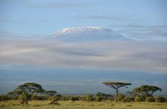 """natgeophotocontestweek2-7Juan Manuel Aguilera Angulo / National Geographic Photo Contest. """"Mists around Kilimanjaro"""". This picture was taken during a safari in Amboseli. The sky was clear early in the morning, but around ten it began to cloud over around the Mountain. Creating the effect of an island over the the sea. I hope to go back to Africa and see again the snow-covered peak of Kilimajaro. Maybe in the future this picture won't be possible due to climate change. Photo location…"""