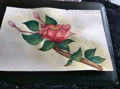Watercolor so