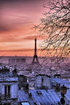 Can there possibly be a more beautiful view??? Eiffel Tower @ sunset by romvi, via Flickr #Paris