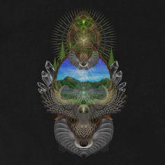 Mystère de la forêt Tshirt coton Ringspun par ArtofSamuelFarrand