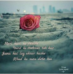 177 Best True Love Syed Images Real Love True Love Sad Quotes