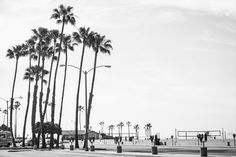 5 things to do in Long Beach, California - Travel Blog tips - In My Dreams