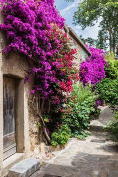 Village fleuri - Bormes-les-Mimosas, Provence audreylovesparis.tumblr.com