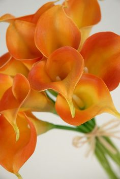 real touch orange calla lily (not mini, but can it come in mini)