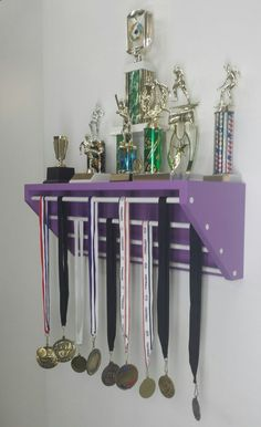 Display for medals and trophies. Trophy Shelf, Trophy Display, Award Display, Display Shelves, Race Medal Displays, Trophies And Medals, Sports Trophies, Ribbon Display, Kids Awards