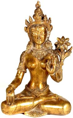 images buddist godess tara | Goddess White Tara Tara Goddess, Goddess Art, Indonesian Art, Asian History, Buddha Statues, Tibetan Art, Buddhist Art, Religious Icons, Indian Gods