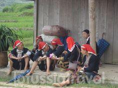 Faire une randonnée Sapa Vietnam est l'activité recommandé quand vous voyagez à Sapa au Vietnam.