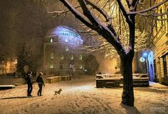 Hello Pécs Hungary, Snow, Outdoor, Outdoors, Outdoor Games, The Great Outdoors, Eyes, Let It Snow