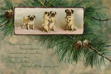 Dancing Pugs Christmas Cards