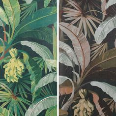 La Palma Wallpaper from my Majorelle collection for Swipe for colours - Aqua > Coral > Gilver > Hollywood > Midnight > Sepia Palm Wallpaper, Aqua, Coral, Plant Leaves, Hollywood, Colours, Plants, Bathrooms, Laundry