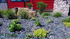 Best type of mulch for landscape #Landscape #Ideas #Grand Rapids #Kalamazoo #Garden Landscape #Design