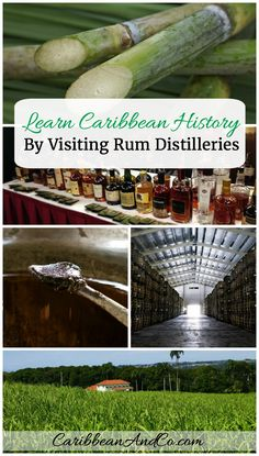 Discover why travelling to the Caribbean and visiting rum distilleries is a great way to learn the history of the region.