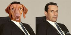 Mad Men's Don Draper as a Vizsla: Attractive, active, and cunning, with a strong survival instinct. Vizslas get bored with repetitive exercises and ignore commands if they find something more interesting. Mad Men Characters, Fictional Characters, Dog Love, Puppy Love, Mad Men Don Draper, Mad Men Decor, Mad Men Party, Character Personality, Survival Instinct