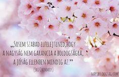 Sri Chinmoy idézete a jóság és a boldogság kapcsolatáról. A kép forrása: Napi Boldogság Pink Blossom, Motivational Quotes, Messages, Life, Inspiration, Bottle, Flowers, Quotation, Biblical Inspiration