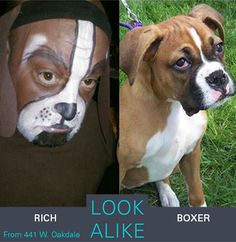 Rich and a boxer #lookalikes #lookalike #doppelganger #boxer #puppy #animals #celebrities #separatedatbirth