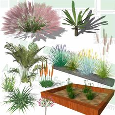 A collection of garden bushes and shrubs as SketchUp 3D models. Click image for free download! Bushes And Shrubs, Sketchup Model, Playground Design, Landscape Architecture Design, Parking Design, Landscaping Plants, Planting Flowers, 2d, Garden Design