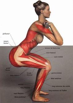Perchè nell' #esercizio di #squat il #ginocchio deve stare dietro la punta del #piede? #personal #fitness #trainer #wellness #Bologna Google+: https://plus.google.com/u/0/+StefanoMoscaPersonalTrainer/posts